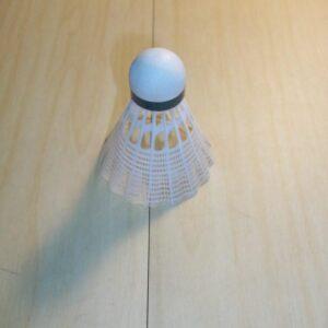 jex-800-badminton-shuttles-1434538561.jpg
