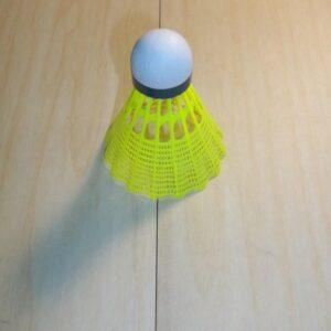 jex-800-badminton-shuttles-1434538670.jpg