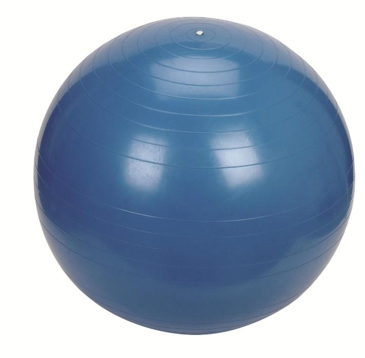 Exercise Balls & Stability Balls | Best Price Guarantee at ...